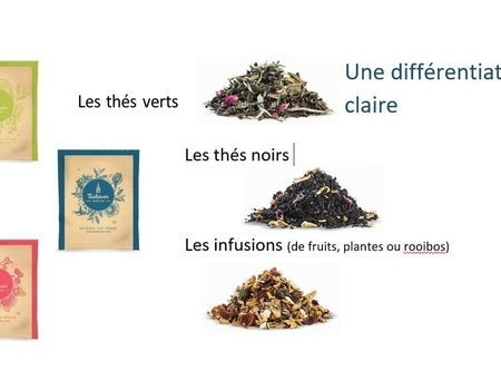 Tisane tropicale. infusion de fruits
